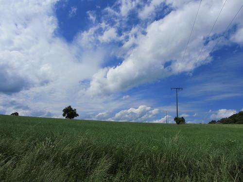 20120607 104 blau Wolken Baum