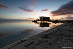 Seul sur le sable ... - Photo of Carcans