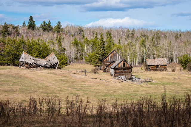 Abandoned Homestead, Athabasca Landing Trail - Download Photo - Photohab - Beautiful and Free Photos Search Engine