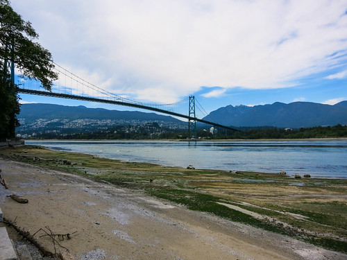 Lion's Gate Bridge by Stanley Park