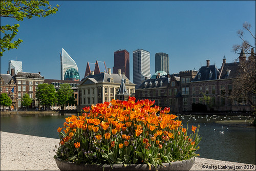 Spring in The Hague
