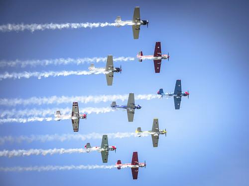 YAK 52's at Omaka Airshow 2019