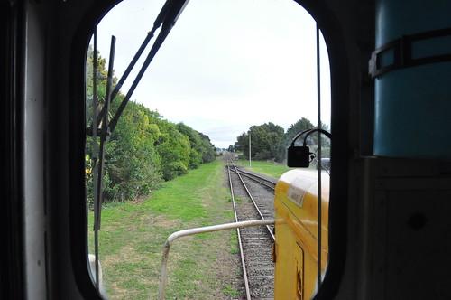 Looking Towards Morrinsville