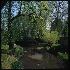 La rivière Nièvre - Photo of Nevers