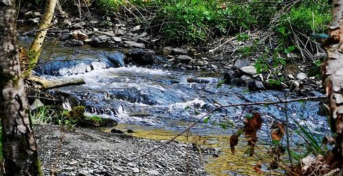 Ruisseau des Munos