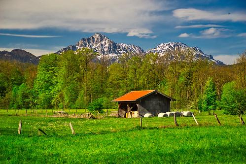 Rural spring