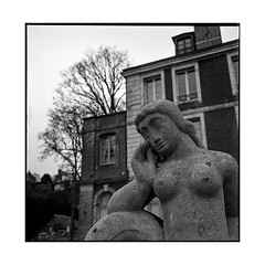 tits • caudebec, normandy • 2018
