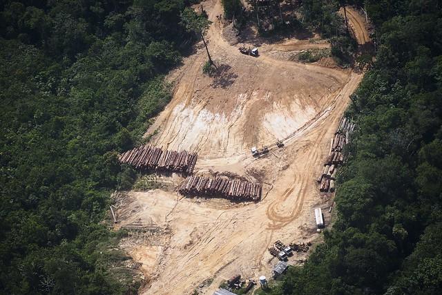 Com relatório, empresas que fazem desmatamento e invasões a terras indígenas podem ter dificuldades para fazer negócios no exterior - Créditos: Foto: Raphael Alves/AFP