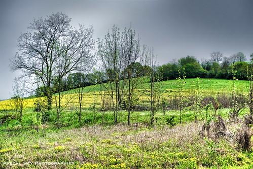 Entre deux averses, sur la route de Saint-Sorlin en Valloire.
