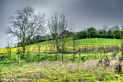 Entre deux averses, sur la route de Saint-Sorlin en Valloire. - Photo of Anneyron