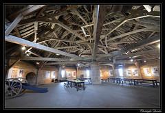 Langres - Salle sous le toit de la Tour de Navarre