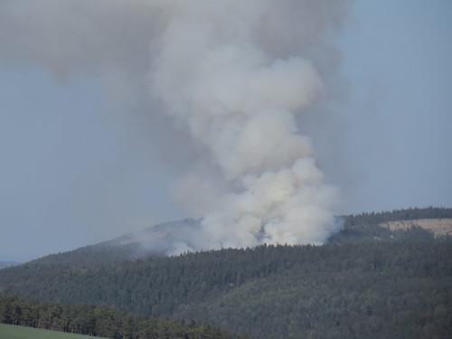 es brennt der knüppeltrockene Wald