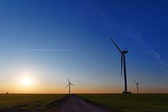 Wind turbine in Beauce Field