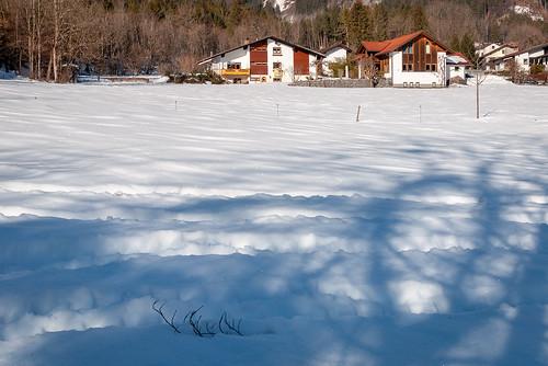 Matin d'hiver (Vandans, Osterreich)-107