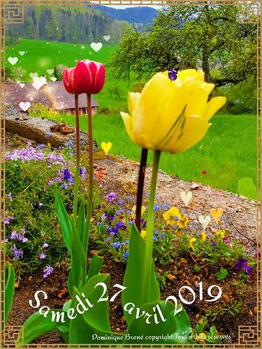 Avec un peu d'avance  Je viens vous souhaiter  Un premier mai chanceux  Et un bon dimanche d'avril  Le dernier du mois.... db