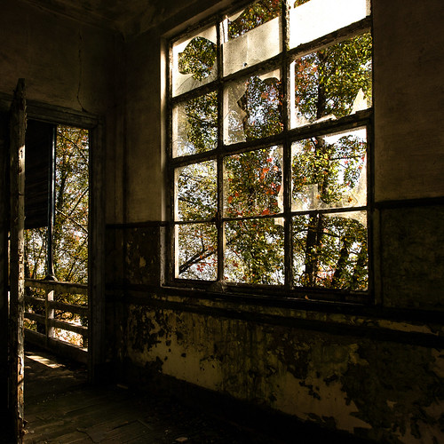 abandoned beauty