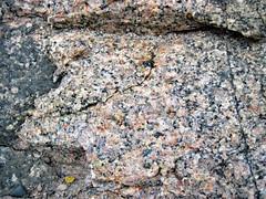 Cartier Granite (Neoarchean; 2.642 Ga; Crab Lake South roadcut, south-southeast of Cartier, Ontario, Canada) 2