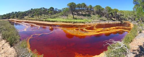 Gours estromatolíticos de schwermannita-jarosita-goethita formados en lixiviados ácidos de drenaje de derrubios mineros - Río Tintillo (Faja Pirítica Ibérica, El Campillo, Huelva, España) - 06