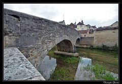 Châtillon-sur-Seine - Pont du Perthuis-au-loup - Photo of Mosson