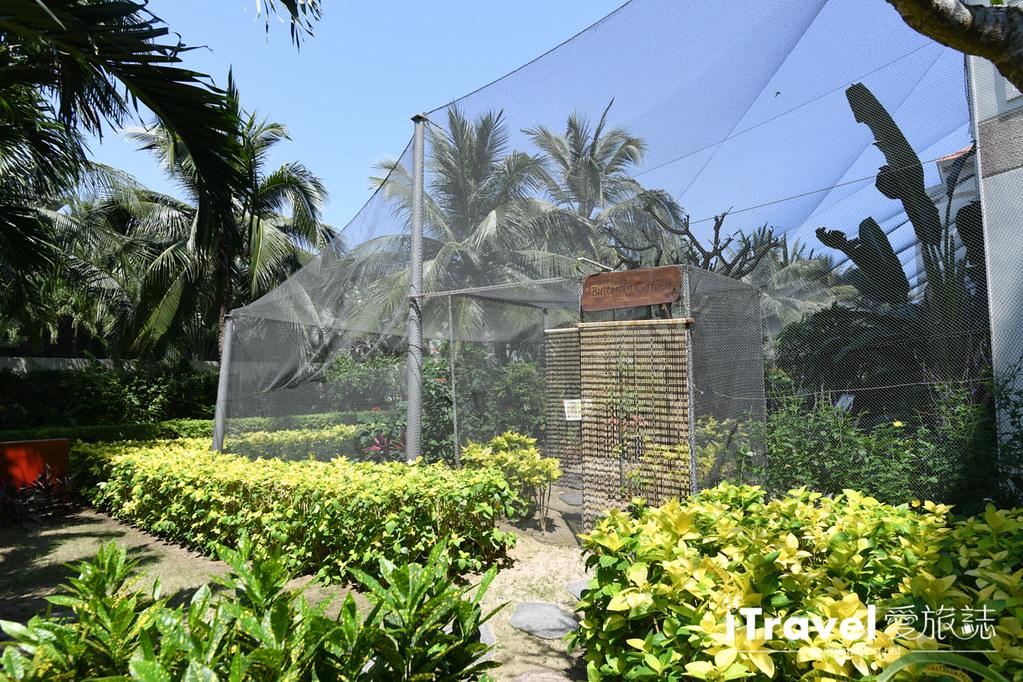 铂尔曼岘港海滩度假饭店 Pullman Danang Beach Resort (127)