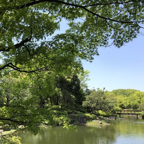 Shiratori-garden 7