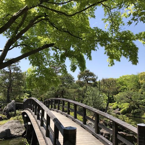 Shiratori-garden 8