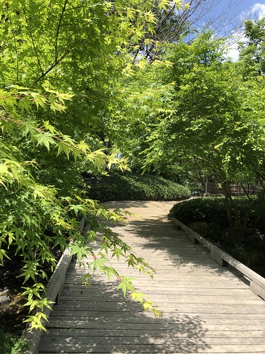 Shiratori-garden 2