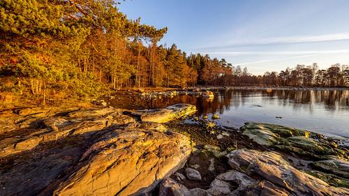 Morning mood in Uutela II, East-Helsinki 🌴🌴