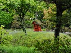 Photo:Garden behind Hyozu Shrine (兵主大社) By Greg Peterson in Japan
