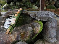 Photo:Purification water basin Hyozu Shrine (兵主大社) By Greg Peterson in Japan