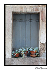 Window Garden - Photo of Tourbes