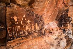 Gold Butte National Monument Petroglyphs (4-8-17)