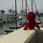 Elmo visits Dana Point