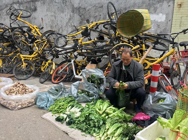 Lettuce Seller
