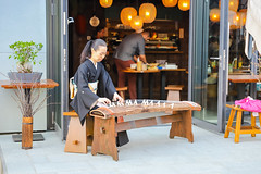 Playing the Japanese stringed musical instrument Koto in Berlin