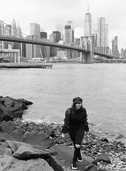 Brooklyn Shores