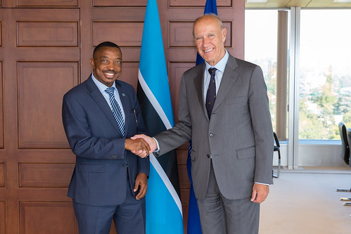 WIPO Director General Meets Botswana's Minister of Tertiary Education, Research, Science and Technology