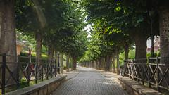 Promenade du Rampart - Photo of Bœrsch