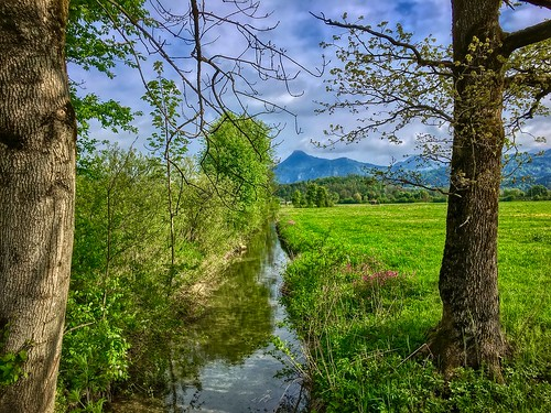 Brook between Kiefersfelden and Oberaudorf in Bavaria, Germany