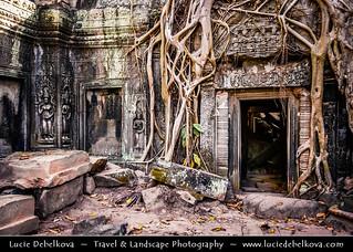 Cambodia - Ta Prohm Temple Lost in Jungle of Angkor Temples Area