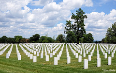 The National Soldier's Home & Cemetery, Dayton, OH