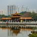 16791-Shenzhen