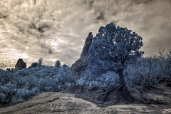 Infrared HDR Garden of the Gods Colorado Springs Colorado.