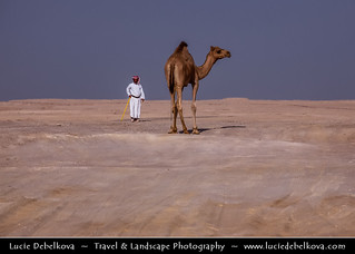 Bahrain - Man and his Camel in the Desert near Tree of Life