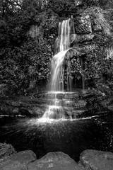 Ness Gardens Waterfall
