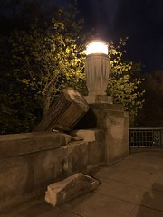 Fallen tree, night at Klingle Valley Bridge, Connecticut Avenue NW, Washington, D.C.