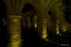 Le Cloître de la cathédrale Saint Front