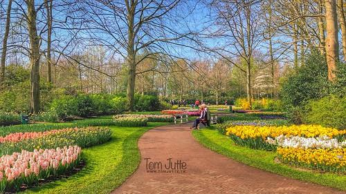 Happy Easter, Keukenhof Gardens, Netherlands - 2490