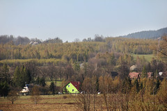 Kwieciszowice village