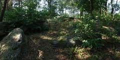 Le champ de menhirs de Sévéroué à Saint-Just - Ille-et-Vilaine - Août 2018 - 03 - Photo of Bruc-sur-Aff